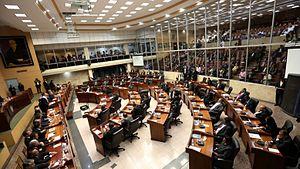 Pleno_de_la_Asamblea_Nacional_de_Diputados